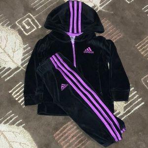 Adidas Toddler Tracksuit